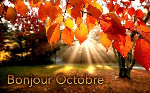 Bonjour Octobre! Chez Mel&Yo Santé Vente et location de matériel médical à Romans sur Isère